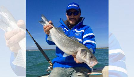 Suzuki al pescare show