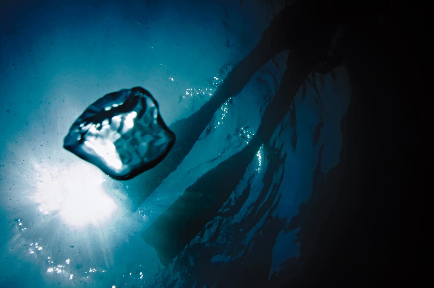 subacquea liguria