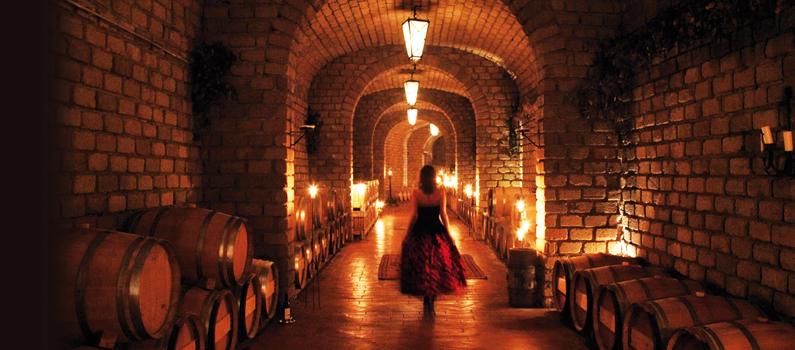 Villa Tirrena Wine Resort